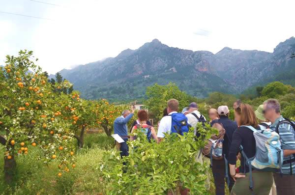 Los visitantes de Eco-Vinyassa escuchan las explicaciones de Joan