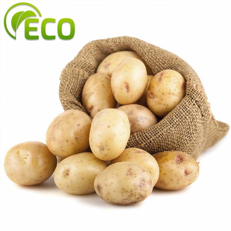 Patata blanca ECO 1kg