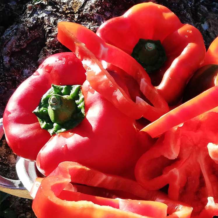 Pimientos rojos 1kg
