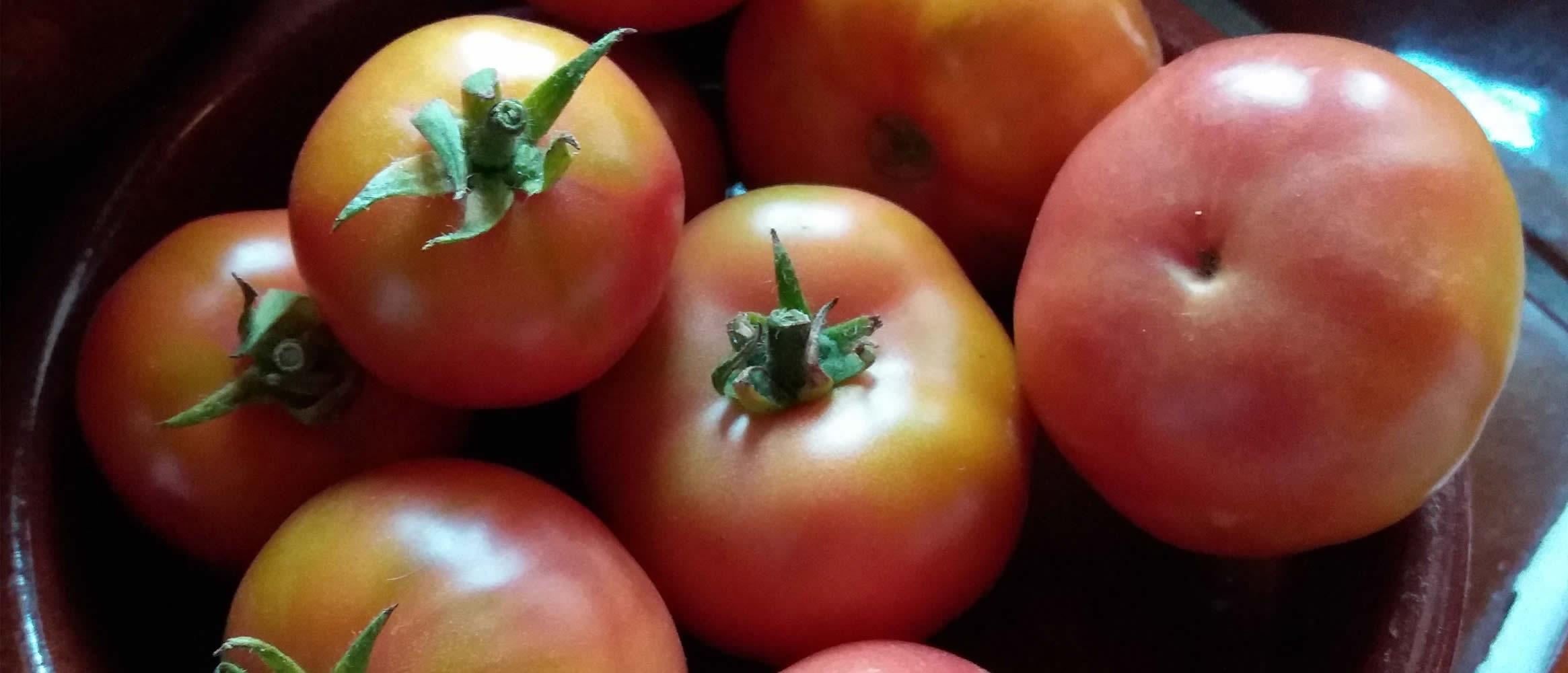 "Tomate ""d\\'enfilar Ramallet"" 1kg"