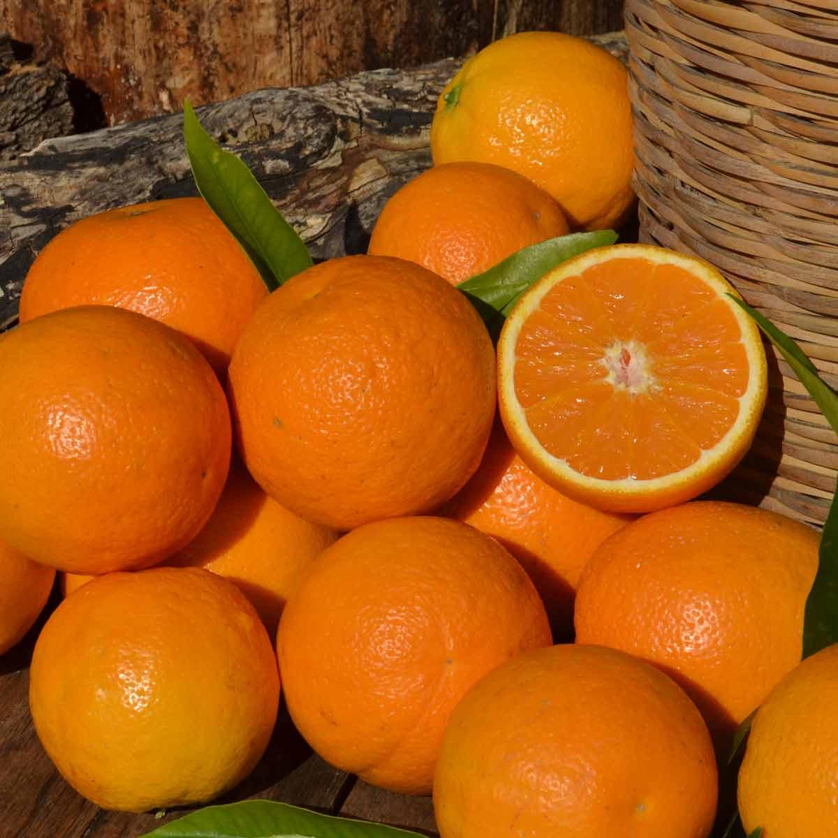 Naranjas Valencialate caja 10Kg