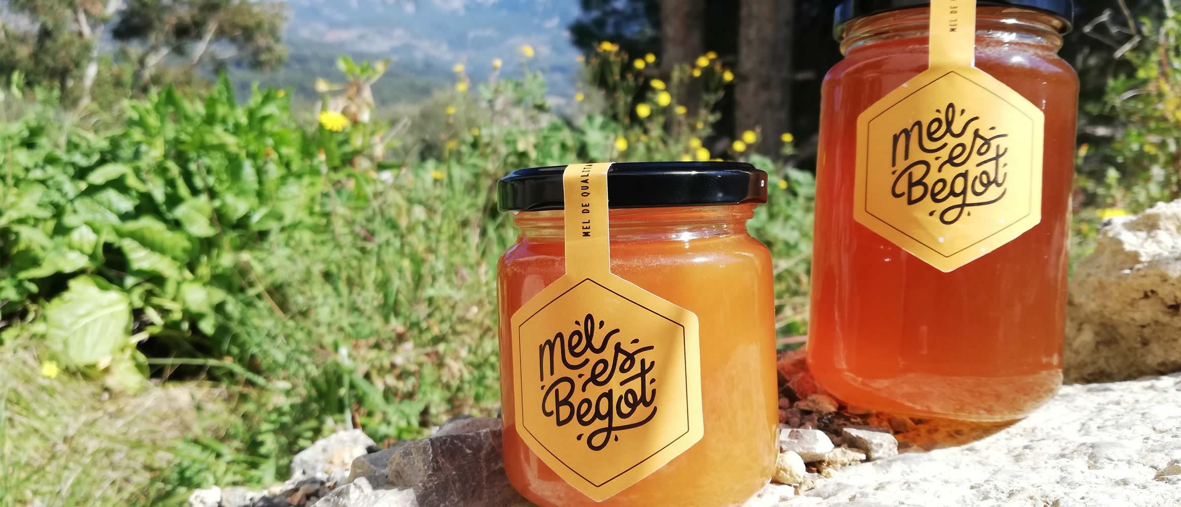 Mel Es Begot Miel de abejas 240g