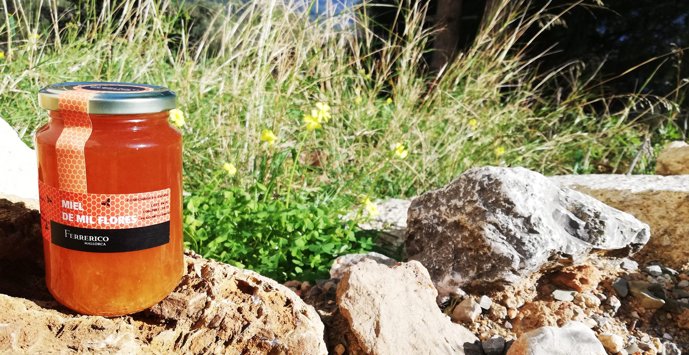 Ferrerico Blütenhonig Miel de Mil flores