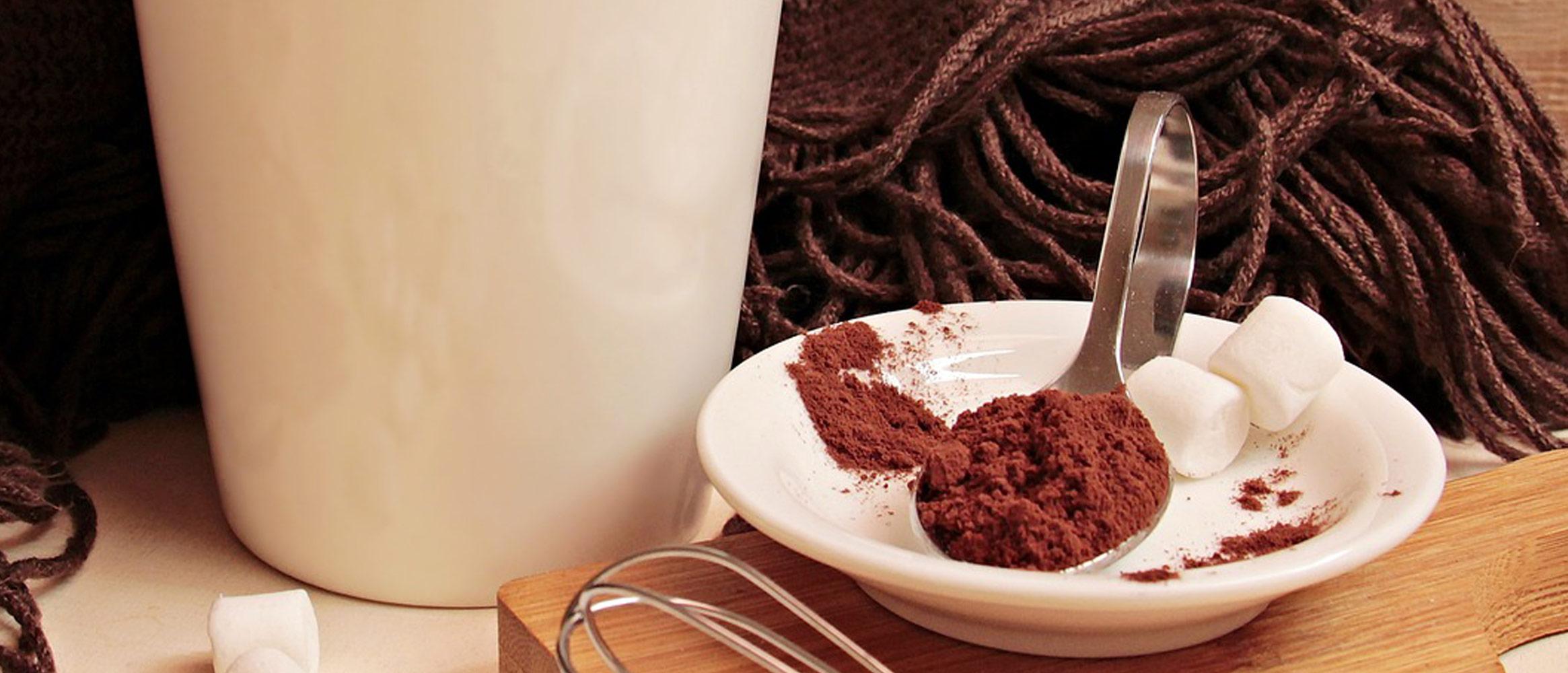 Cacao ecológico